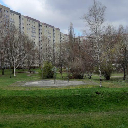 Bild Bild-1 anzeigen